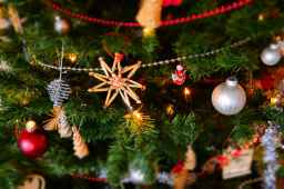 Not My Christmas Tree